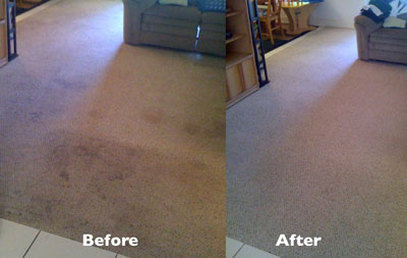Carpet Clean | Westchester County | NY